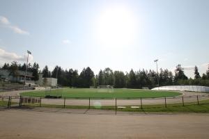 Windsor Field